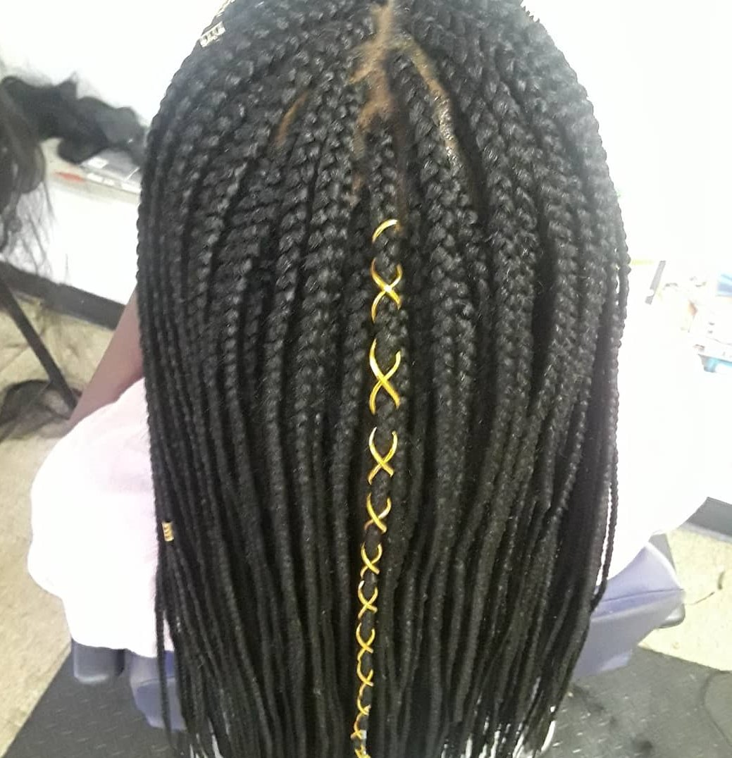 Box Braids with Ribbon Accent on Medium Length Hair back view